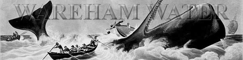 https://warehamwater.cruelery.com/header/warehamwater3.jpg